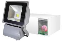 Прожектор светодиодный СДО70 6000к